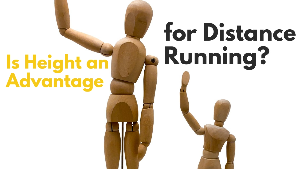Is Height a Advantage for Distance Running